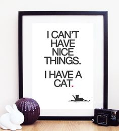I Can't Have Nice Things I Have A Cat Poster Print von ohdearmolly, $8.50
