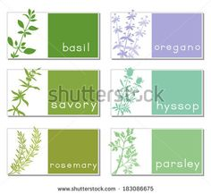 Set of six tags with aromatic herbs.