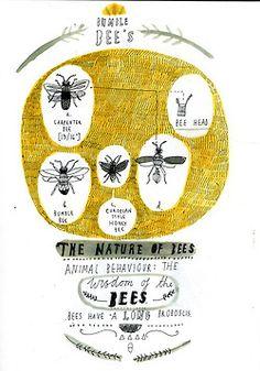 Bee diagram......Katt Frank(?)