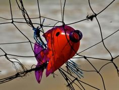 Creating Art With Trash To Inspire Change Marine Debris, Trash Art, Ocean Art, Recycled Art, Marine Life, People Around The World, Natural World, Kids Playing, Habitats