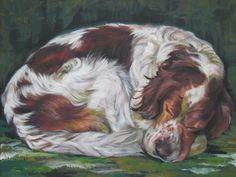 Irish Red And White Setter art print CANVAS print by TheDogLover