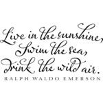 ralph waldo emerson~if I had a beach house, i'd paint this on the wall in the master bedroom