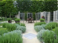 Richard Miers' design of sunny back garden with aromatic evergreen herbs - lavender, rosemary and thyme.