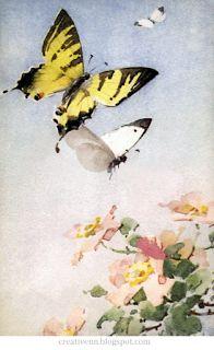 Vintage. Catherine Klein. Бабочки. Старинные иллюстрации.: ♥ Creative NN. ♥