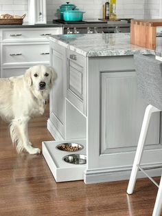 Well appointed kitchen features a gray center island topped with a gray quartzite countertop and fitted with pull out, built in dog bowls.