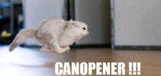 Canopener!!!