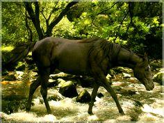 crossing... by Subaru09.deviantart.com on @DeviantArt