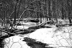 Winter At Pedelo Black And White by Deena Stoddard  #winter #landscape #blackandwhitephotography