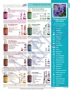 NEW Printable Young Living Party Handout - Everyday Uses for the Everyday Essential Oils Collection