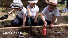 II Concurso Huertos Escolares Sostenibles. CEIP Blas de Lezo