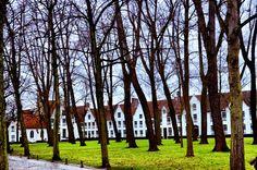 Winter Morning at the Beguinage in Bruges, Belgium - LandLopers