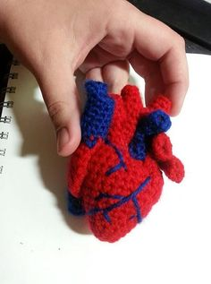 This is the most scientifically accurate heart pattern on Etsy and Ravelry. You will be crocheting all of the visible parts of a human heart. You will make the main heart muscle, Inferior Vena Cava, Right Atrium, Superior Vena Cava, Aorta and Aortic Veins, Pulmonary Artery, Pulmonary