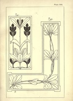 Nature drawing and design by Steeley Frank