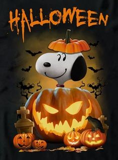Celebrate Each New Day Charlie Brown Halloween, Snoopy Halloween, Halloween Rocks, Charlie Brown And Snoopy, Scary Halloween, Vintage Halloween, Snoopy Images, Snoopy Pictures, Halloween Artwork