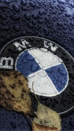 Bmw Iphone Wallpaper, Bmw Wallpapers, Boxing Day, Hot Cars, Carros Bmw, Car Shed, Bmw M Series, Bmw Black, Best Pc Games