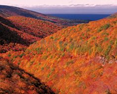 Autumn Scenery Pictures, Cape Breton in Nova Scotia, Canada Ocean Pictures, Scenery Pictures, Fall Pictures, Fall Photos, Visit Nova Scotia, Canada National Parks, Atlantic Canada, Autumn Scenery, Cape Breton