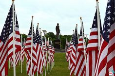 2013 Field of Honor in Fayetteville NC by faytodaynews, via Flickr