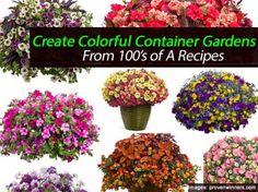 container-garden-recipes