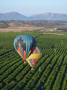 Hot air ballooning @ Temecula, California Had a great time with my husband and then we hit the wineries, SALUD!