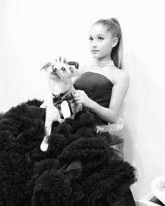 Pin for Later: Ces Célébrités Aiment les Animaux Autant Que Vous Ariana Grande
