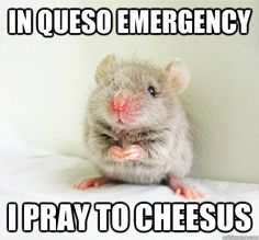 In Queso Emergency, I Pray to Cheesus