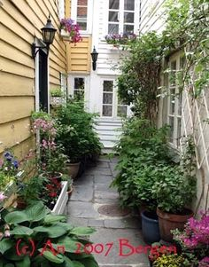 Through the pittoresque backyards in Bergen, Norway (Photo AN)