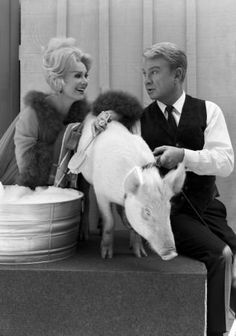 Eva Gabor & Eddie Albert with Arnold Old Hollywood Actresses, Classic Actresses, Zsa Zsa Gabor, Eva Gabor, Buy Tv, Online Photo Gallery, Vintage Tv, Golden Age Of Hollywood, Classic Tv