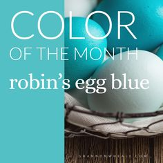 Color of the Month {Robin's Egg Blue}