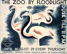 Vintage London Underground Posters On Exhibition For The Tube's Year - flamingos at London Zoo. Whit, look! Railway Posters, Travel Posters, Transport Posters, London Underground, London Transport Museum, Public Transport, London Poster, John Wood, Information Poster