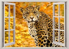 "Tiger Leopard Nature Wild Safari Jungle Animal Home Office Kids Nursery Room Gift 3D Unique Window Depth Style Vinyl Print Removable Wall Sticker Decal Mural Size 24"" x 34"" by Bomba-Deal Bomba-Deal http://www.amazon.com/dp/B00N63GGRO/ref=cm_sw_r_pi_dp_aQHuub1307JA3"
