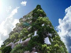 Tallest Vertical Garden