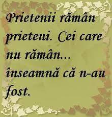 Imagini pentru citate despre prietenie facebook I Hate My Life, Albert Camus, Special Quotes, True Words, Motto, Funny Texts, Bff, Life Hacks, Friendship