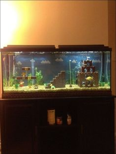 Mario Fish tank (the turtle is so cute)
