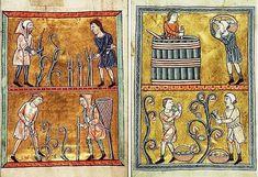 Normandy, 12th century - Den Haag, Königliche Bibliothek  (Wine making scenes)