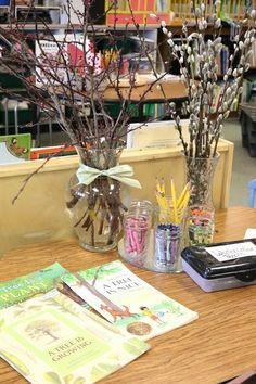 Reggio Inspired Provocations in Kindergarten