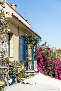 Blue shutters and pink flowers on a balcony in Plaka, Athens, Greece  #athens #greece #europe #travel #shutters