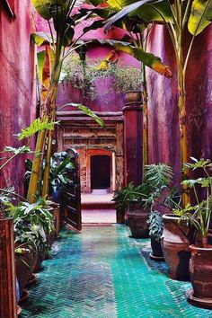 Small garden: make the most of your favorite corners! - small garden red walls and planters Informations About Kleiner Garten: Machen Sie das Beste aus Ihre - Diy Garden, Garden Care, Home And Garden, Garden Types, Moroccan Garden, Moroccan Decor, Moroccan Style, Tropical Garden, Small Gardens