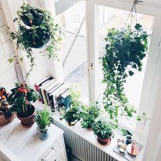 """"""" gästagrammar @upptackdetgoda i fem fredagar framöver! Idag om att flytta in våren i sitt kök ✨"""" Photo taken by @sandrabeijer on Instagram"""