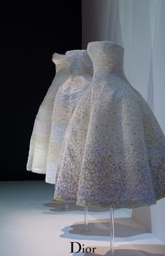MISS DIOR EXHIBITION ~~ Miss Brit Millionairess doing a stop of shopping at Haute Couture dior dawn Aurora dressmesweetiedarling