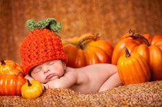 halloween newborn photo shoots - Google Search