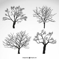 More than a million free vectors, PSD, photos and free icons. Exclusive freebies and all graphic resources that you need for your projects Tree Silhouette, Silhouette Vector, Family Tree Art, Stencil, Illustration Art, Illustrations, Watercolor Trees, Winter Trees, Doodle Drawings