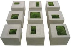 Concrete planters with moss