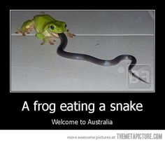 Welcome to Australia…