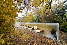 Office In Madrid Lets Employees Feel Like They're Working in the Woods | Bored Panda