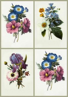 antique+floral+prints | ArtbyJean - Vintage Clip Art: Four Vintage Prints - Collage Sheet