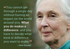 """ you cannot get through a single day without having an impact on the world around you. What you do makes a difference, and you have to decide what kind of difference you want to make."" - Jane Goodall"