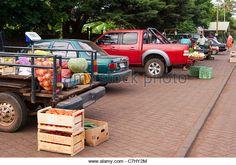 Image result for food market back of truck Market Stalls, Trucks, Marketing, Toys, Image, Activity Toys, Truck, Toy, Market Displays