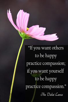 """""""If you want others to be happy practice compassion: if you want yourself to be happy practice compassion."""" The Dalai Lama"""
