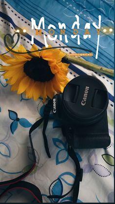 Instagram Status, Foto Instagram, Creative Instagram Stories, Instagram And Snapchat, Instagram Story Ideas, Tumblr Stories, Girls Foto, Overlays Instagram, Cool Instagram Pictures