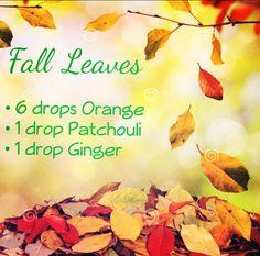 Fall leaves essential oil diffuser blend - orange patchouli ginger